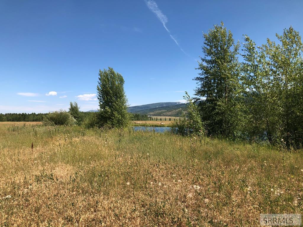 245 Pond Drive Property Photo