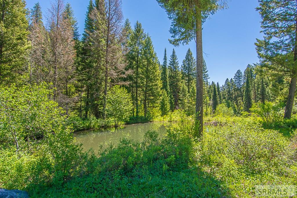 402 Hughes Creek Road Property Photo 7