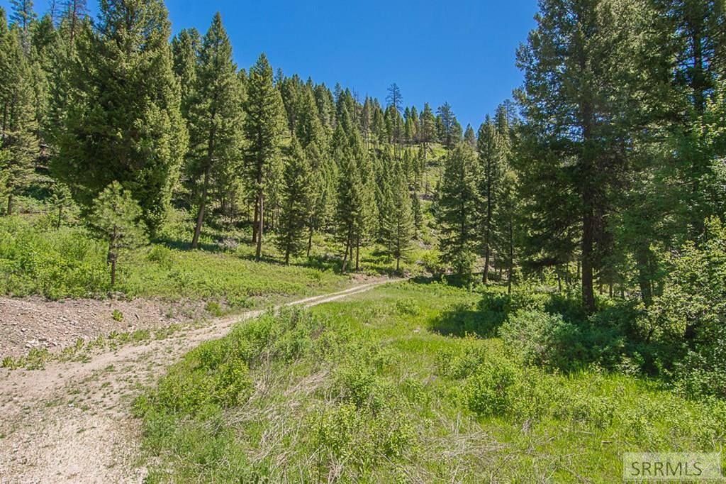 402 Hughes Creek Road Property Photo 10
