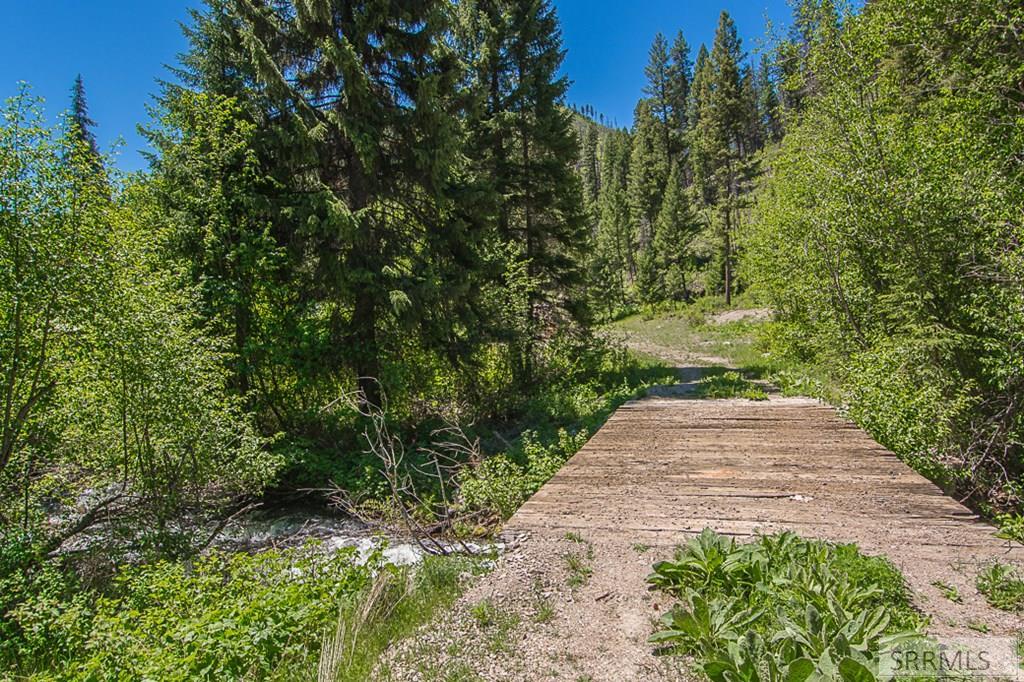 402 Hughes Creek Road Property Photo 11