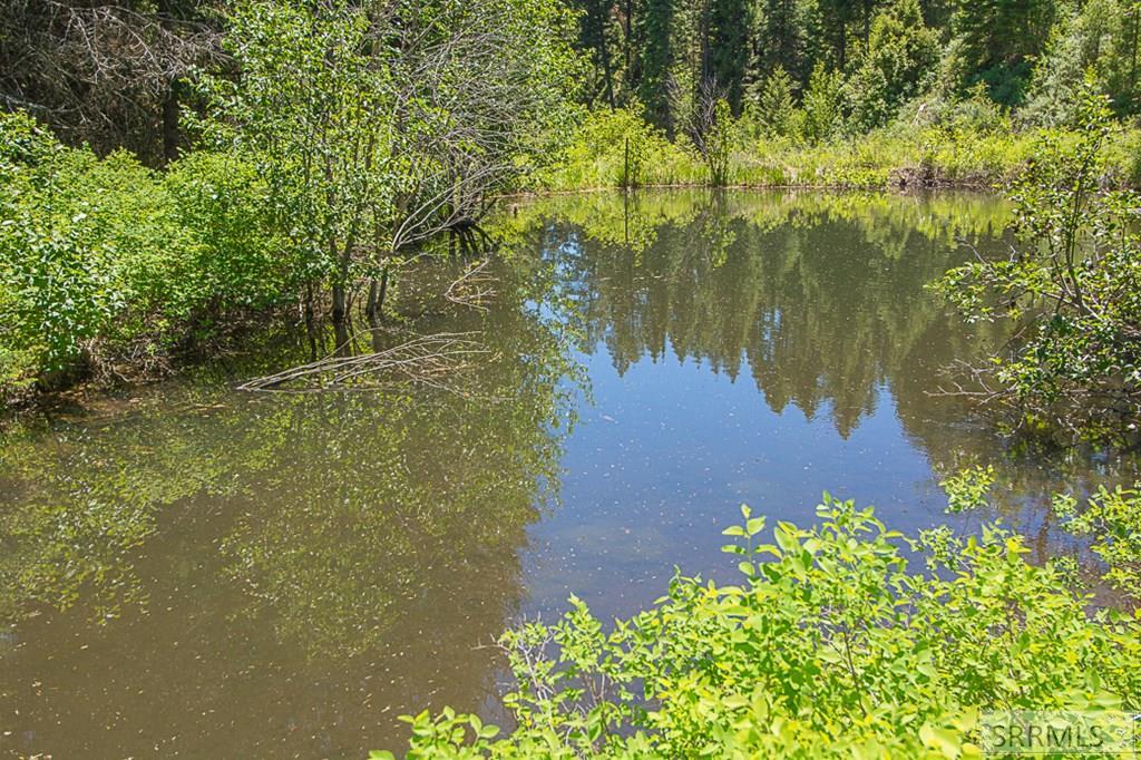 402 Hughes Creek Road Property Photo 46
