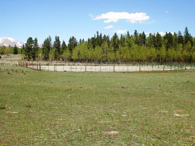 0 Vine Road Property Photo - FAIRPLAY, CO real estate listing