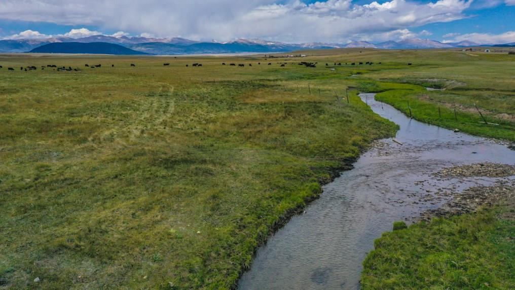 28,29,30 Fourmile Creek Road Property Photo - HARTSEL, CO real estate listing