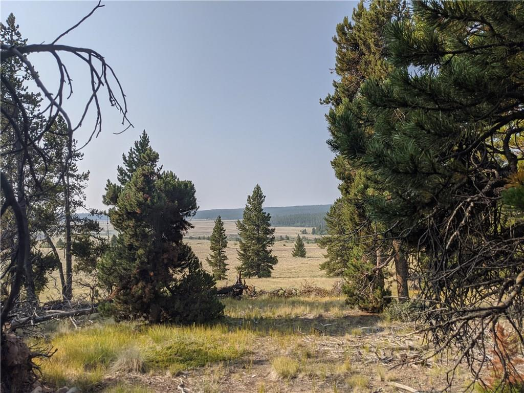 51 Potentilla Road Property Photo - ALMA, CO real estate listing