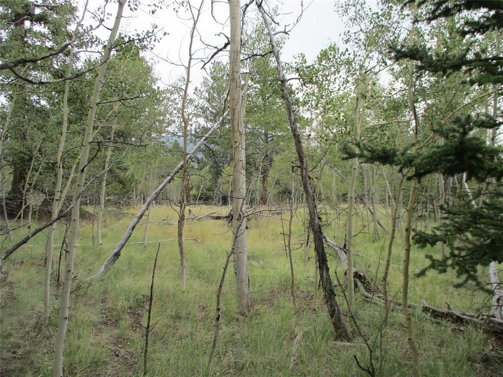74 Bear Lane Property Photo 3