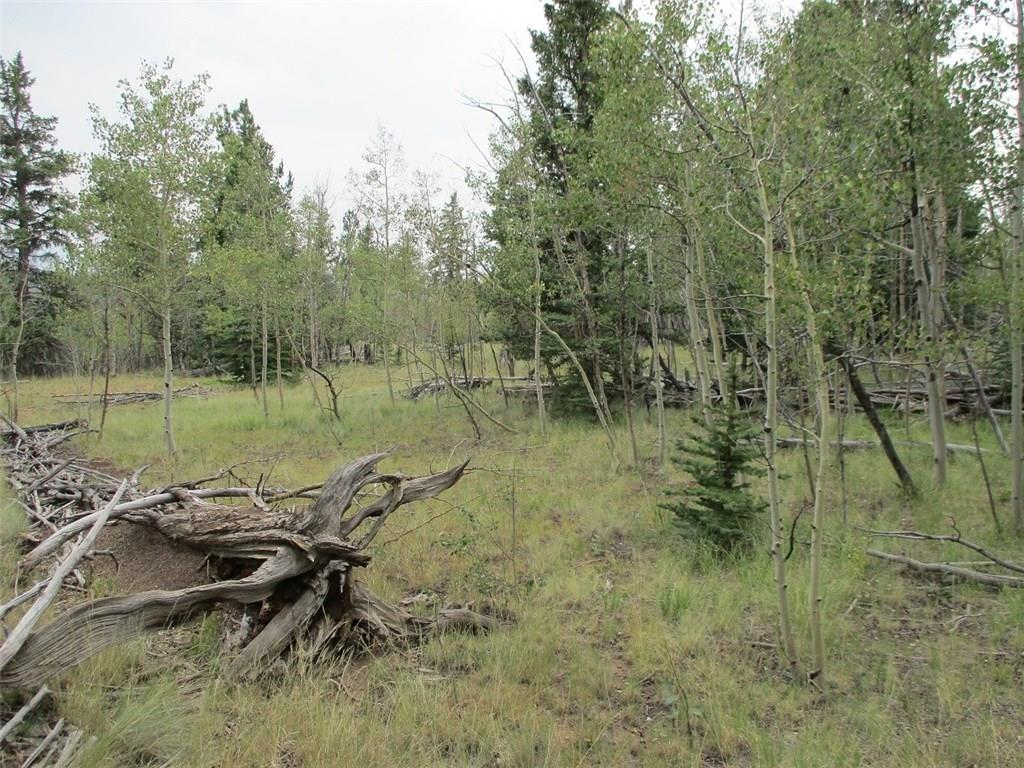 74 Bear Lane Property Photo 7