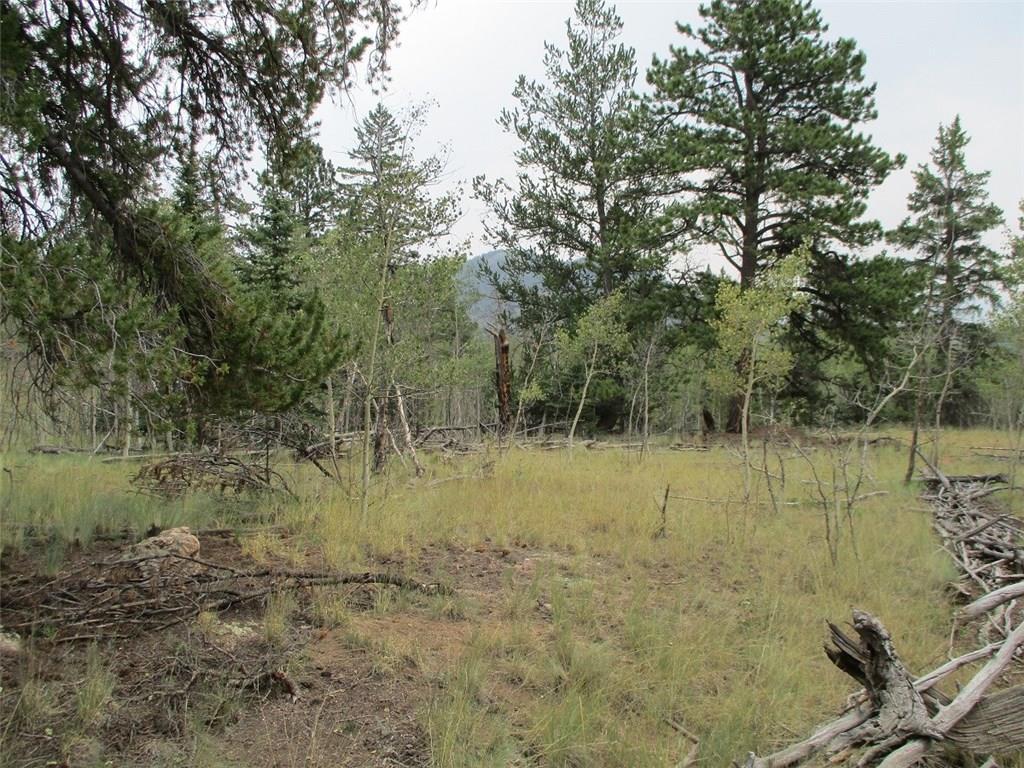 74 Bear Lane Property Photo 9