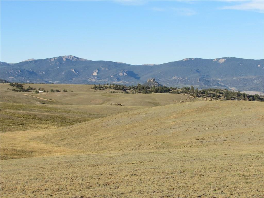 114 Andesite Way Property Photo - HARTSEL, CO real estate listing