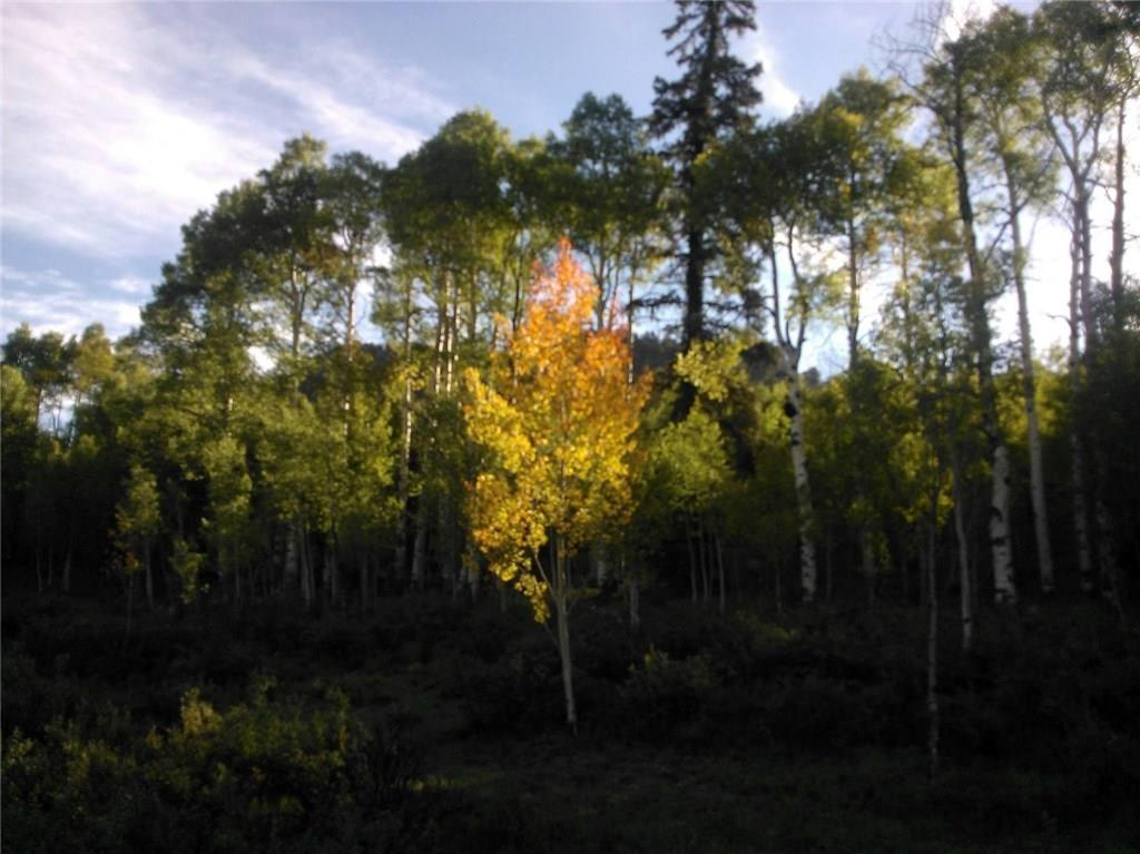 940 Ouray Trail Property Photo