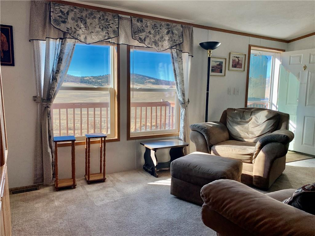 450 Cathy Drive Property Photo - HARTSEL, CO real estate listing