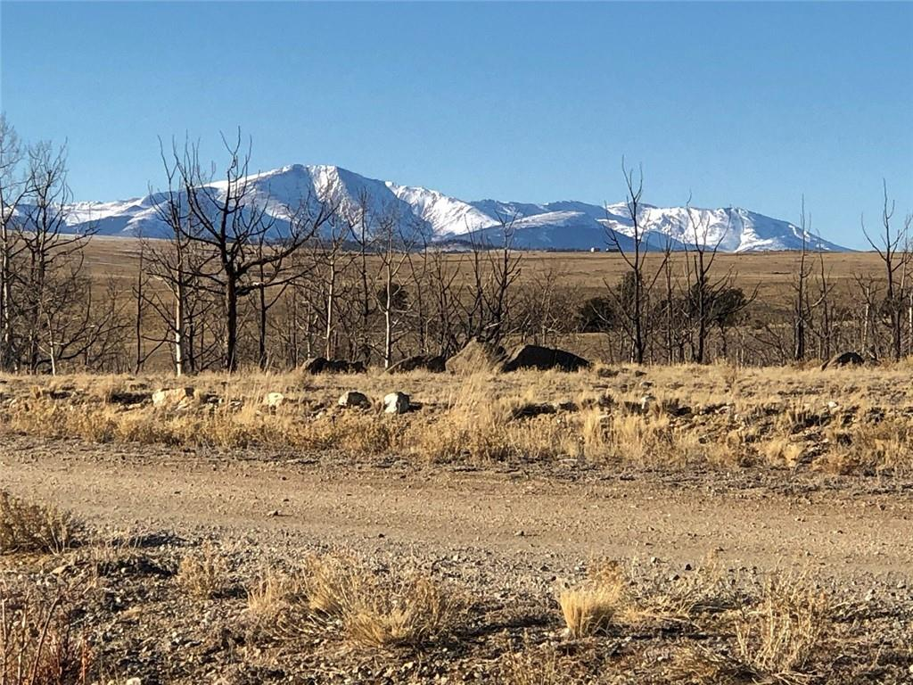 262 Grand Teton Drive Property Photo - HARTSEL, CO real estate listing