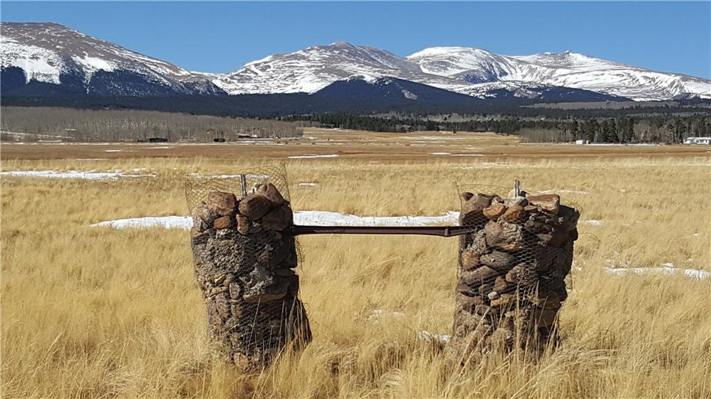 Lot 9 Co Road 18 Road Property Photo - FAIRPLAY, CO real estate listing