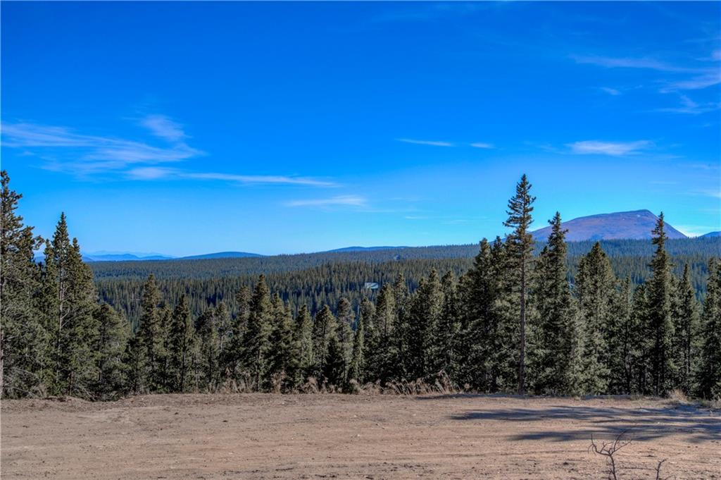 300 Gallagher Lane Property Photo - FAIRPLAY, CO real estate listing