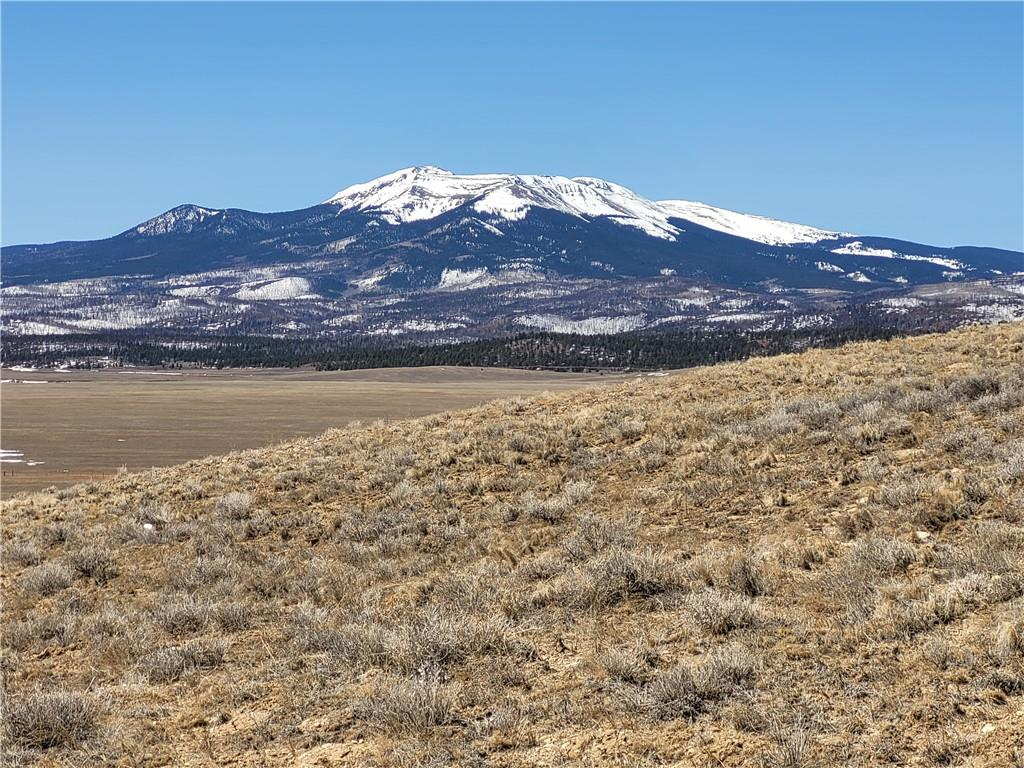 TBD BARE Trail Property Photo - FAIRPLAY, CO real estate listing
