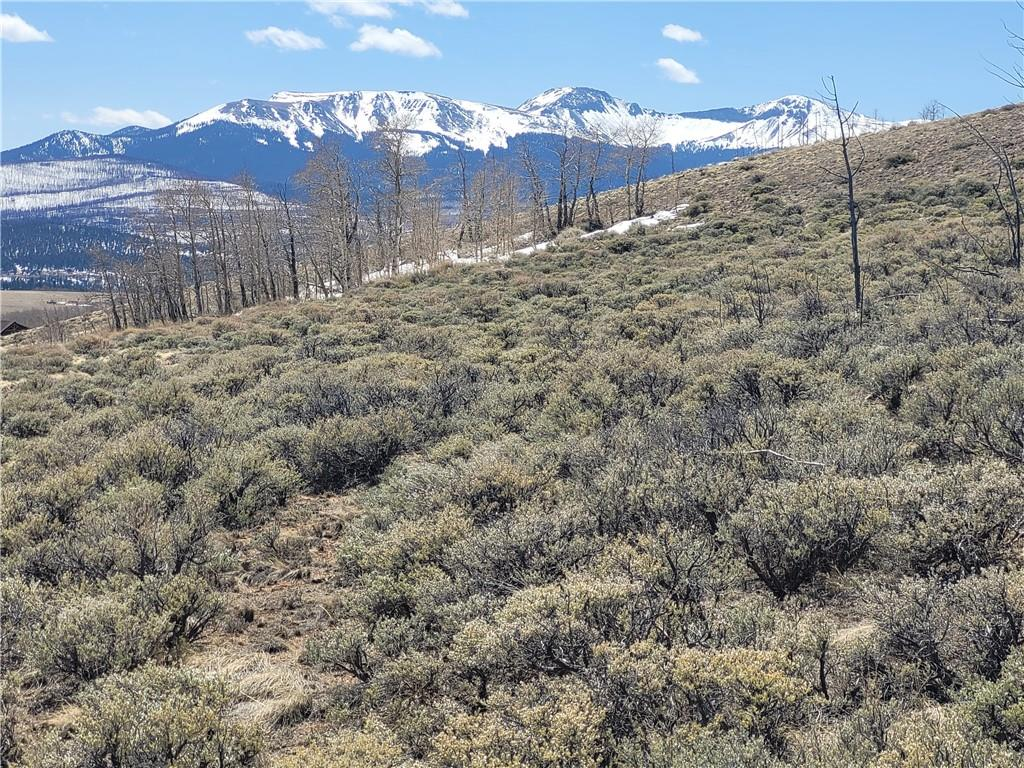 1200 BREAKNECK PASS Court Property Photo - FAIRPLAY, CO real estate listing