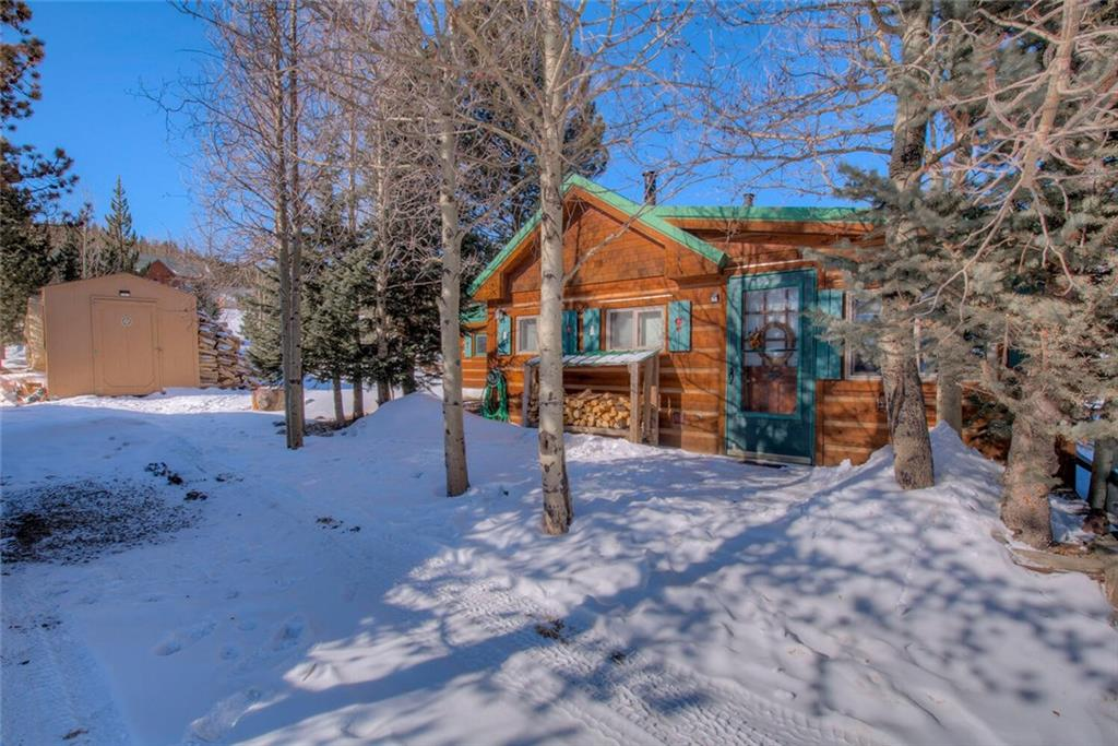 41 Singleton Road Property Photo - ALMA, CO real estate listing