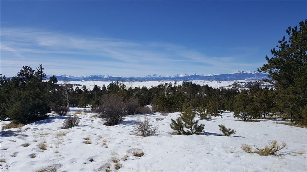 Lot 5884 Running Bear Road Property Photo - HARTSEL, CO real estate listing