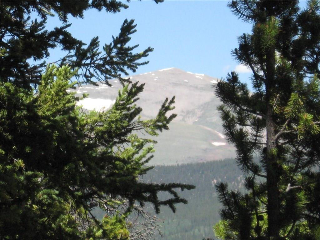 TBD Royce Road Property Photo - FAIRPLAY, CO real estate listing