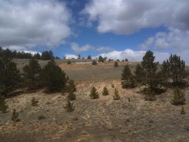 394 Lancelot Lane Property Photo - HARTSEL, CO real estate listing