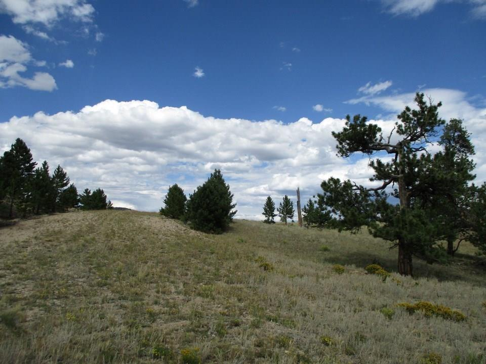 0 Mark Drive Property Photo - HARTSEL, CO real estate listing