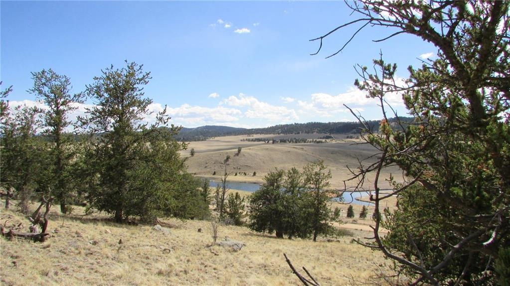 32 Yellowstone Road Property Photo - HARTSEL, CO real estate listing