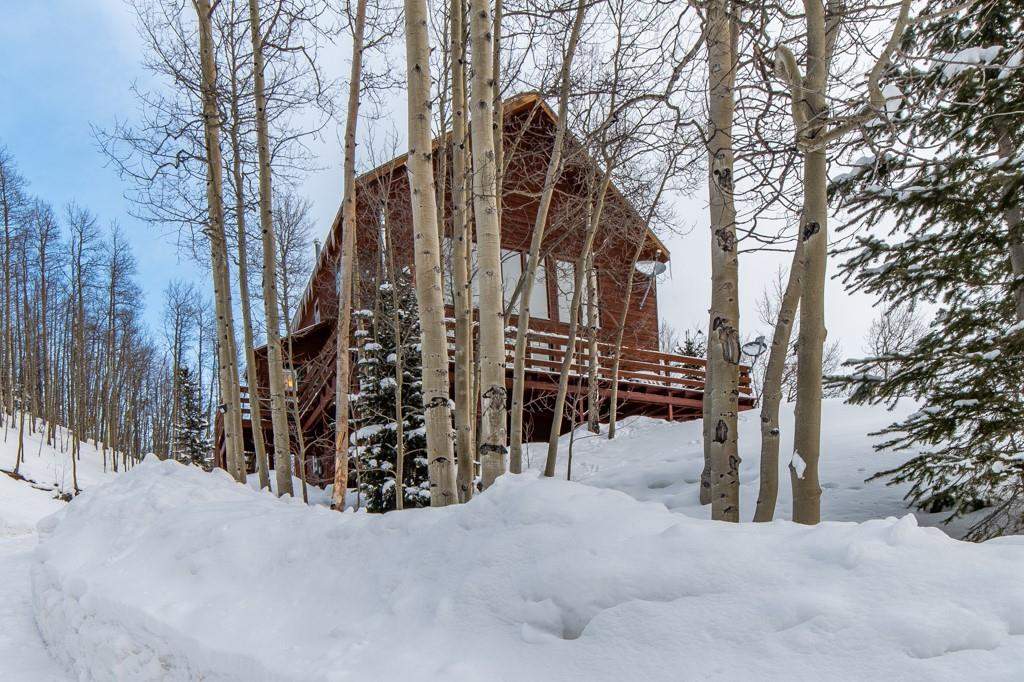 653 Roberts Road Property Photo - ALMA, CO real estate listing
