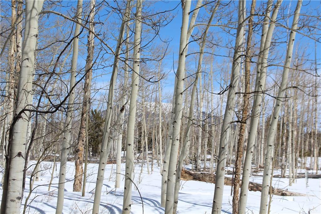 568 Dry Lake Road Property Photo - FAIRPLAY, CO real estate listing