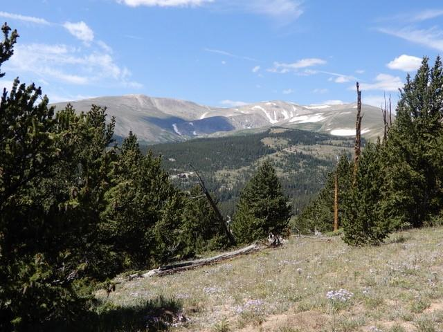 0 Mountain View Drive Property Photo - FAIRPLAY, CO real estate listing