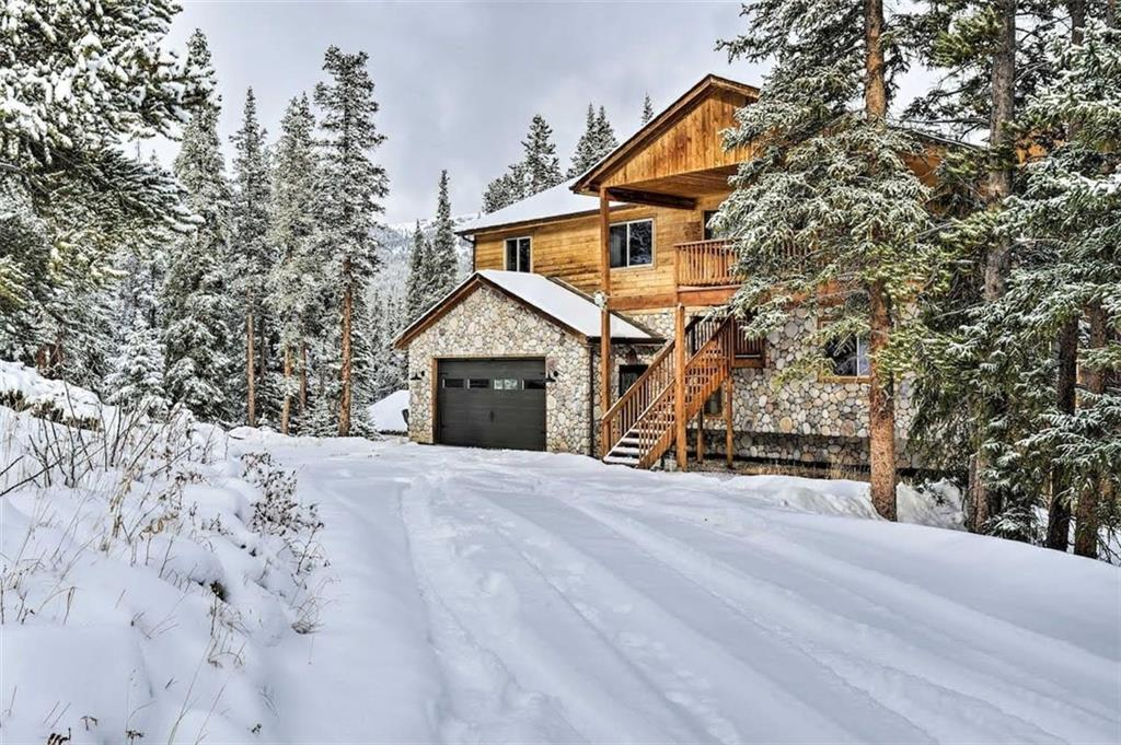 155 Ute Trail Property Photo - ALMA, CO real estate listing