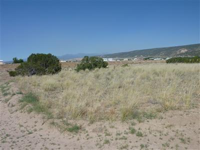 0 Tract C- LOT 3 OF FNRT Property Photo - Alcalde, NM real estate listing