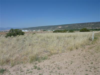 0 Tract C- LOT 4 OF FNRT Property Photo - Alcalde, NM real estate listing