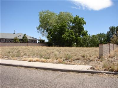 0 Lee Trevino Property Photo - Rio Communities, NM real estate listing