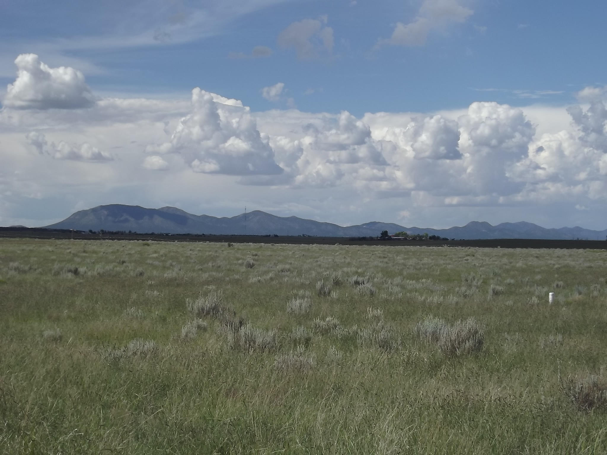 Sunrise Drive Property Photo - Moriarty, NM real estate listing