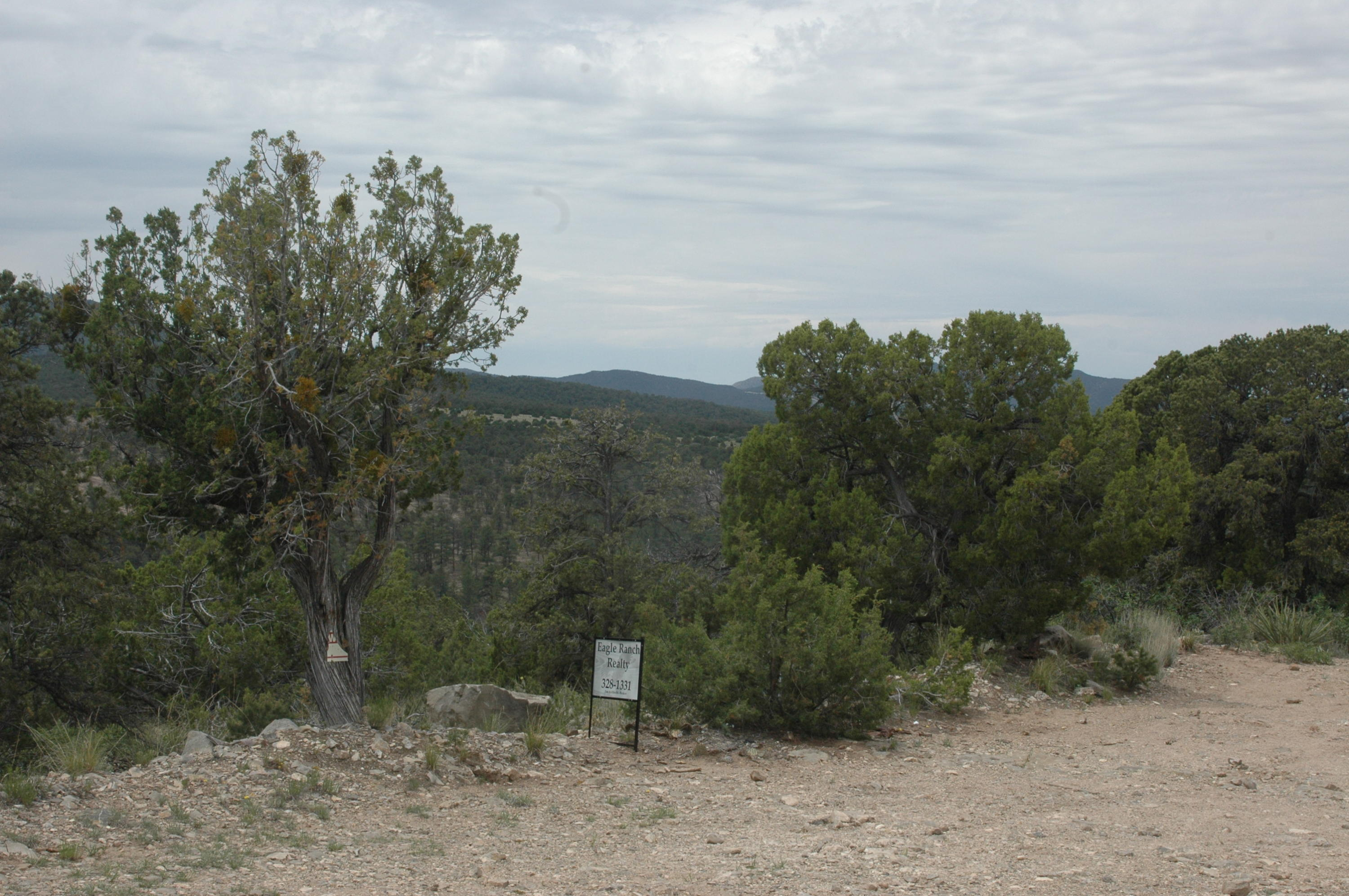 3 Enchantment View (L16,B6,FH) Property Photo - Tijeras, NM real estate listing