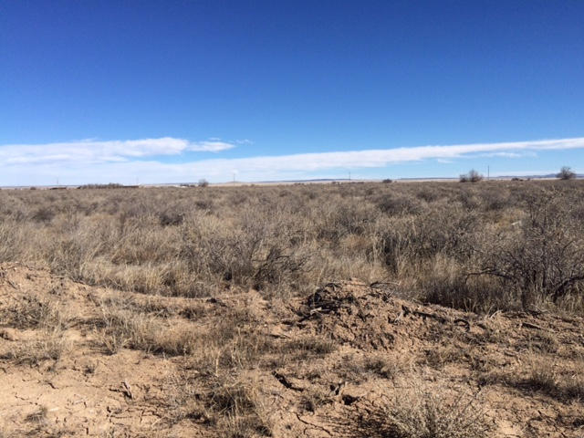 0 Spring Grove Property Photo - McIntosh, NM real estate listing