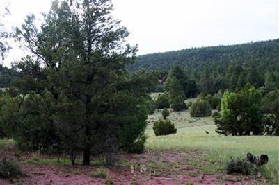 Lot 14 Sagebrush Property Photo - Ramah, NM real estate listing