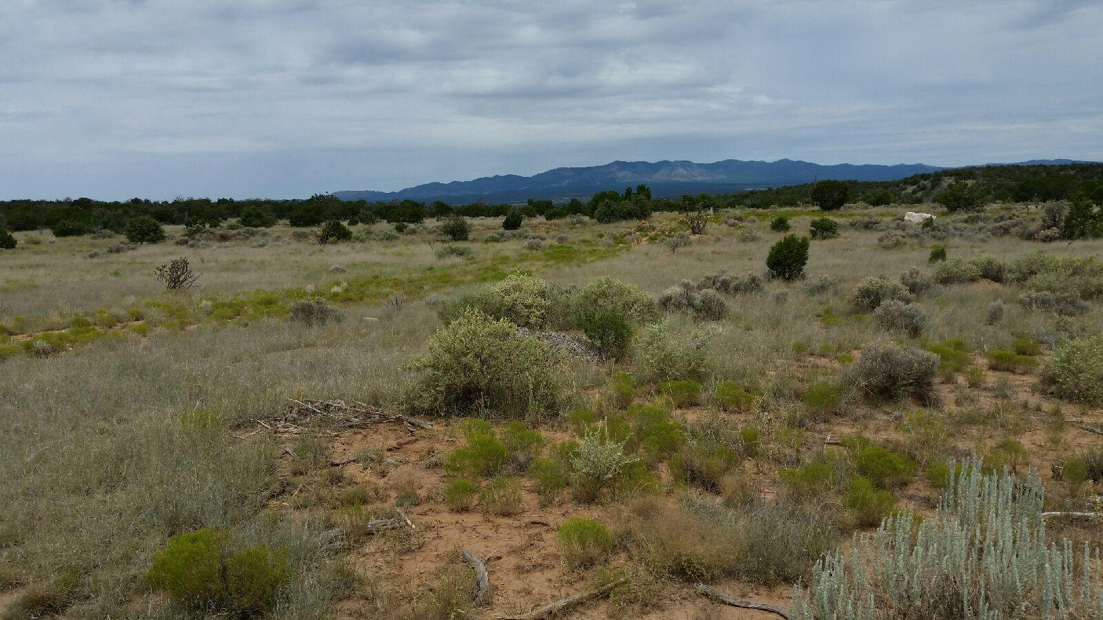 252 Keres Property Photo - Mountainair, NM real estate listing