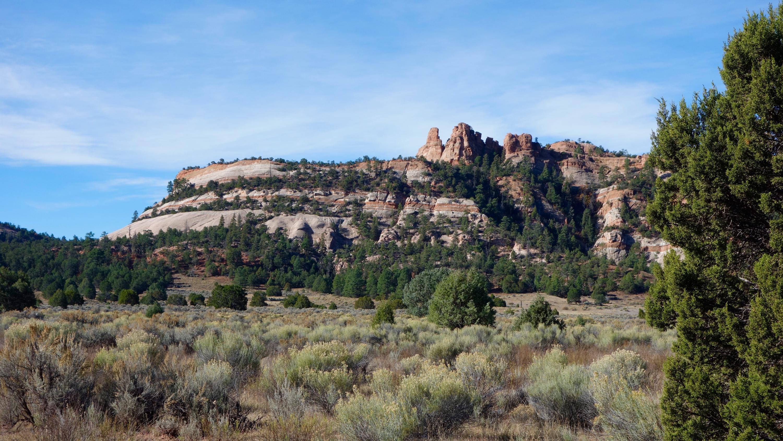 B Box S Ranch Road Property Photo - Ramah, NM real estate listing