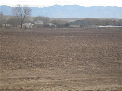 Land Of Bonnie Decker Real Estate Listings Main Image