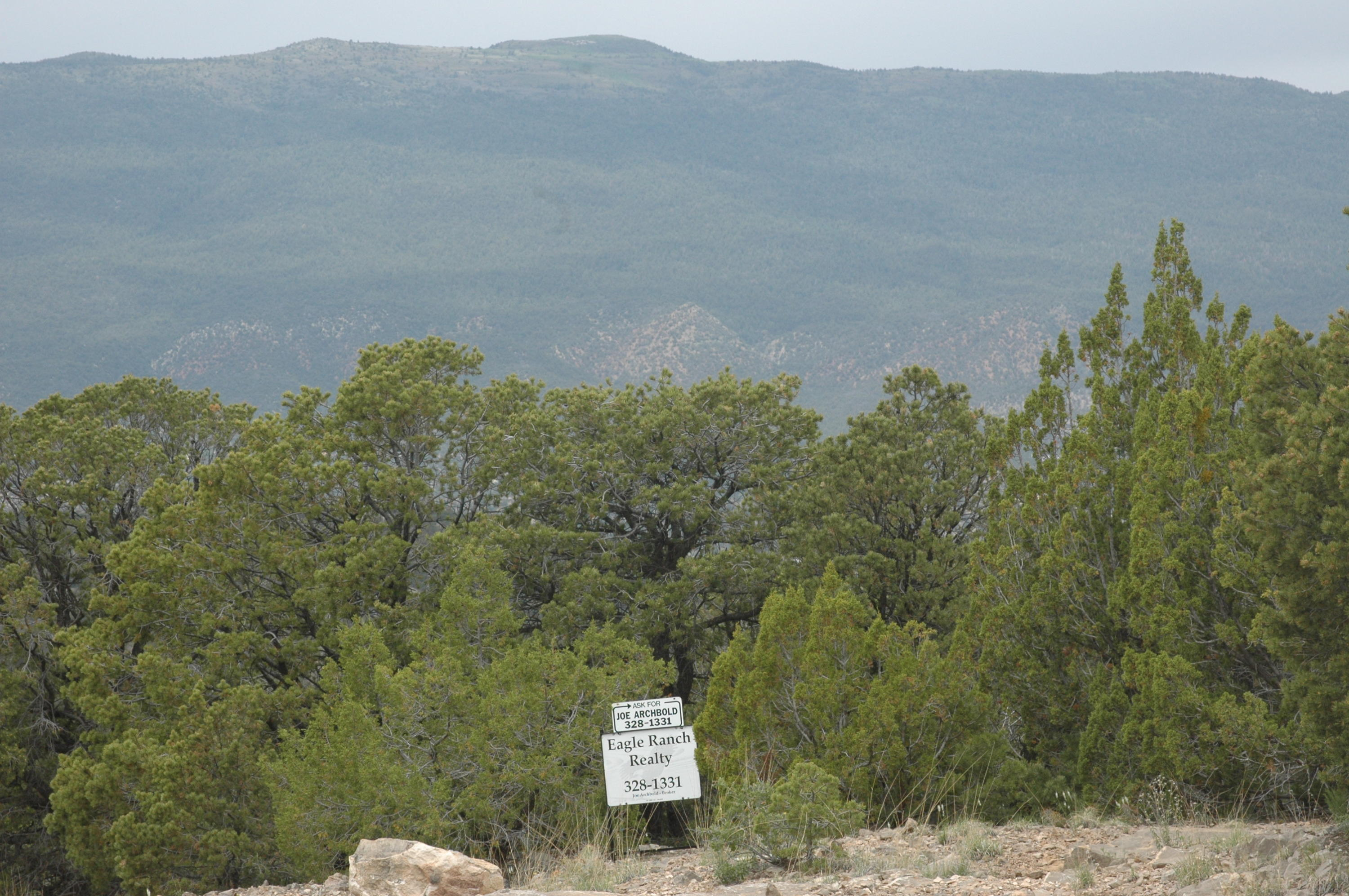 17 Enchantment View (L9,B6,FH) Property Photo - Tijeras, NM real estate listing