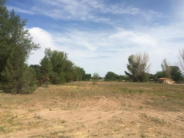 MORRISON Property Photo - Bosque Farms, NM real estate listing