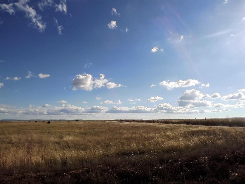 Tract 123 Marshall Road Property Photo - McIntosh, NM real estate listing