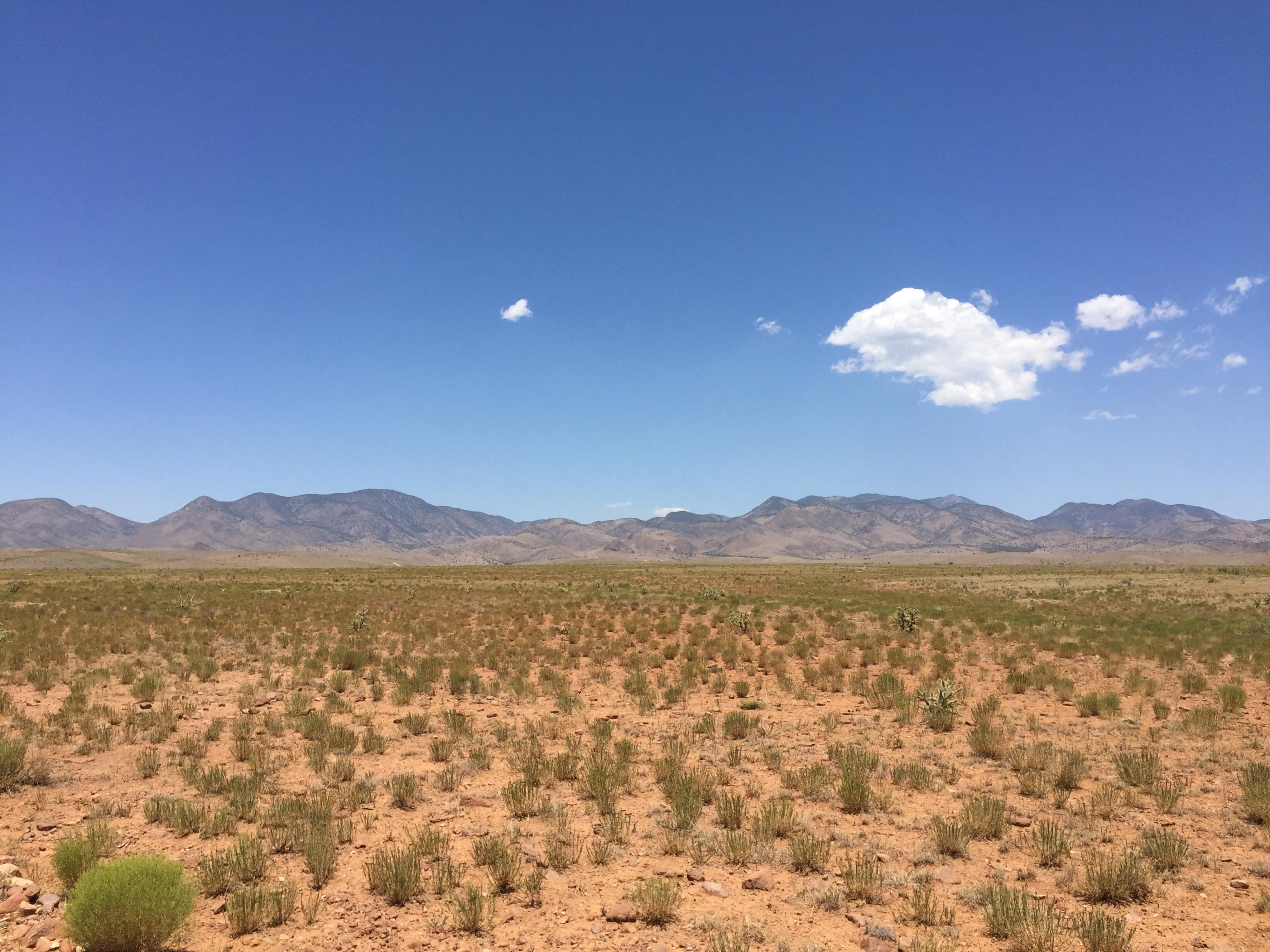 172 Mesa Overlook Drive, San Antonio, NM 87832 - San Antonio, NM real estate listing