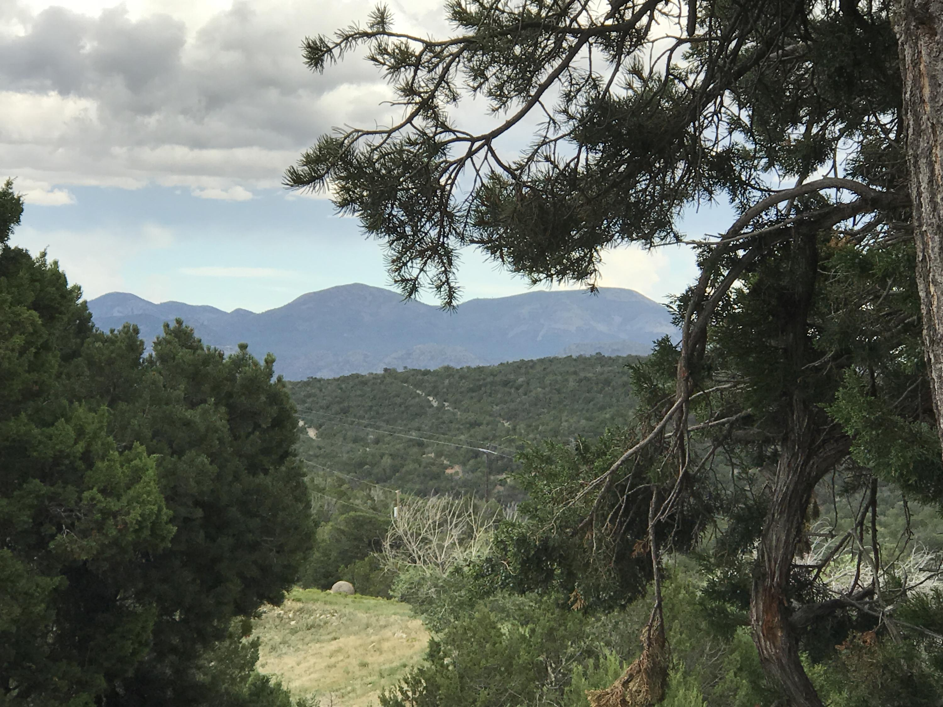 3 Laguna Vista Trail Property Photo - Sandia Park, NM real estate listing