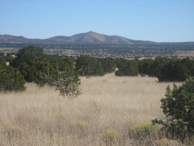 Lot 30 Pinon Springs, Magdalena, NM 87825 - Magdalena, NM real estate listing