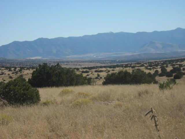 Lot 169 Ridge View, Magdalena, NM 87825 - Magdalena, NM real estate listing