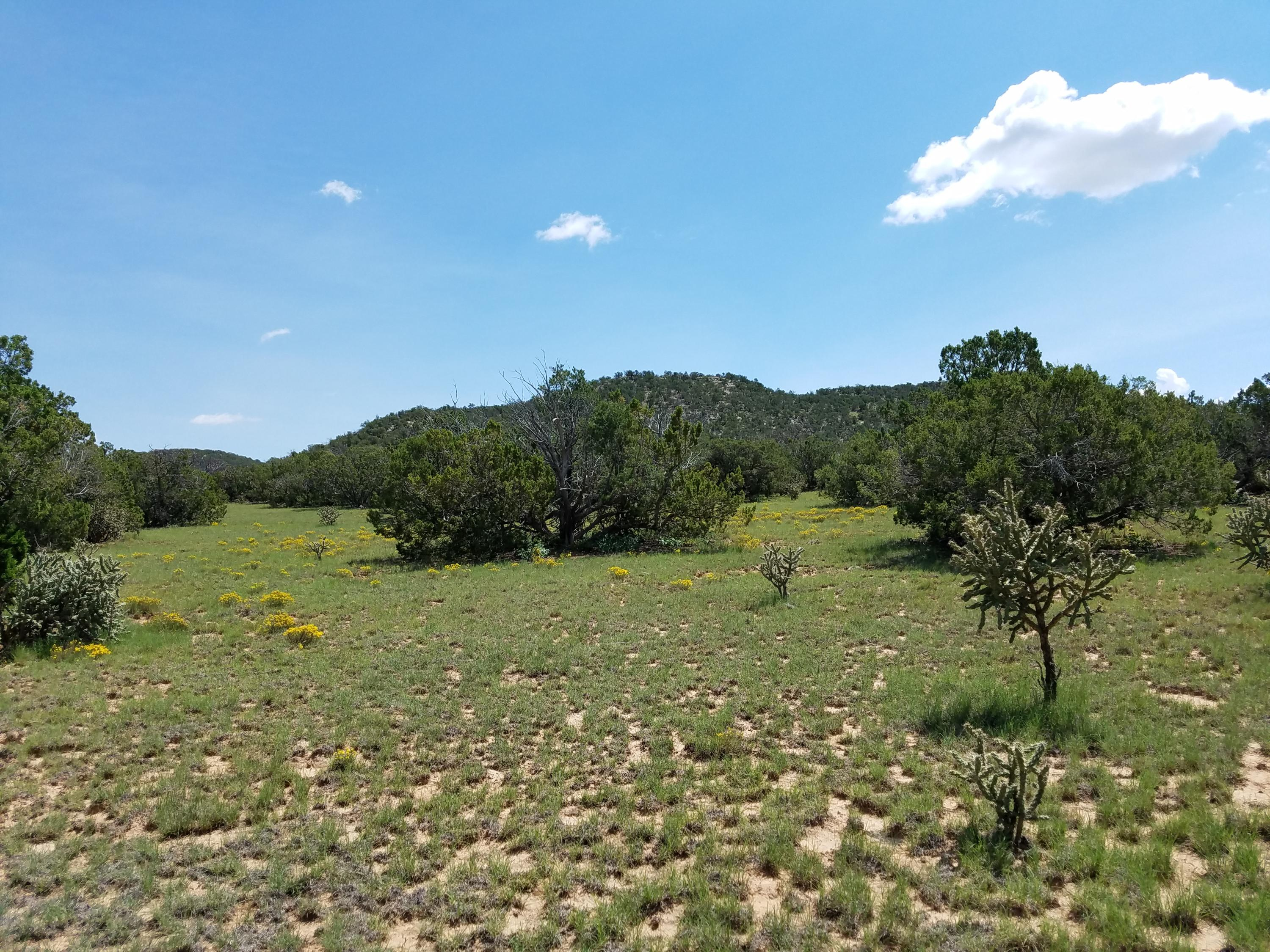 62 Mangas Trail Property Photo - Mountainair, NM real estate listing