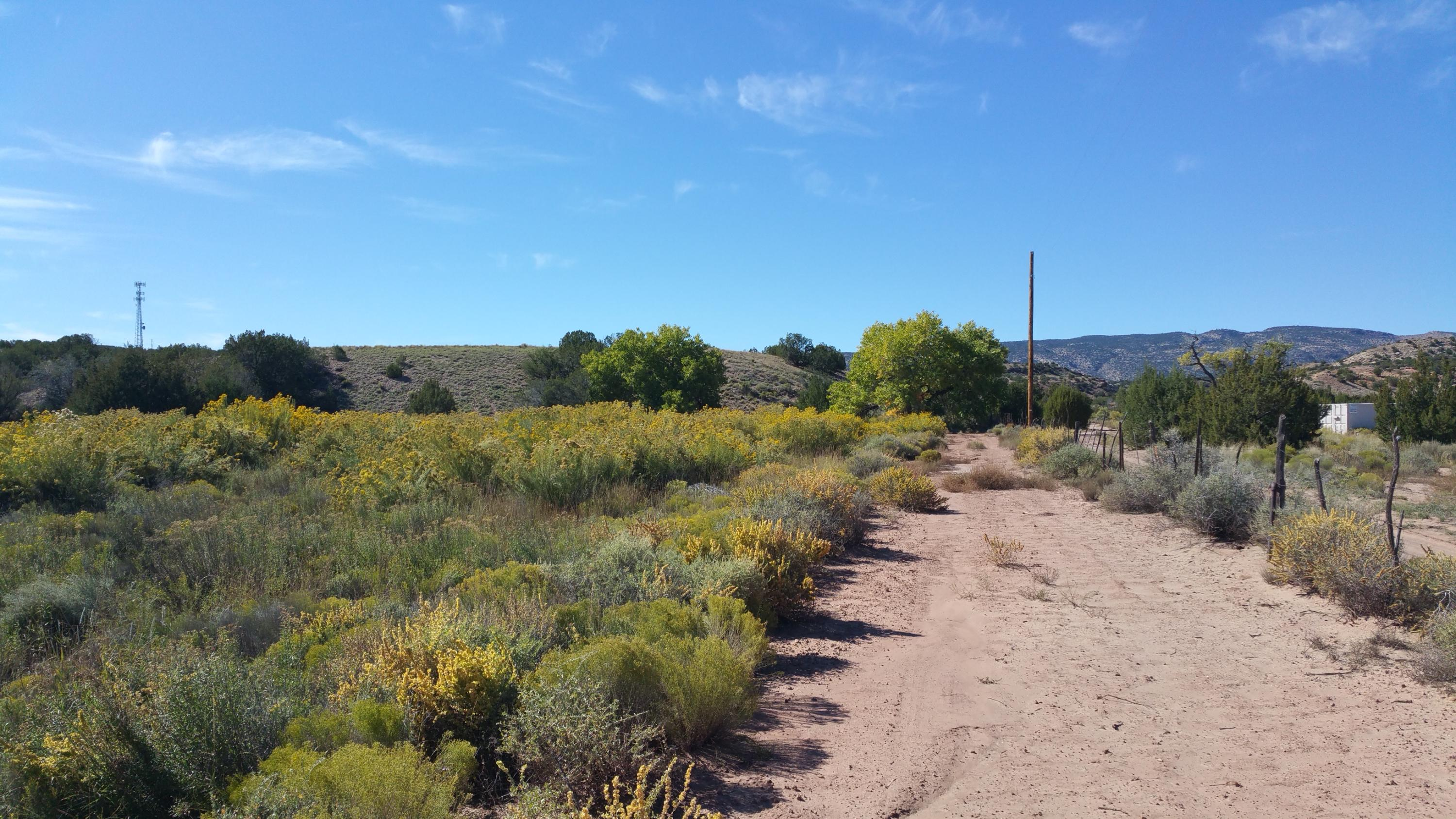 lands of Goodner,cass tract b Property Photo - San Ysidro, NM real estate listing