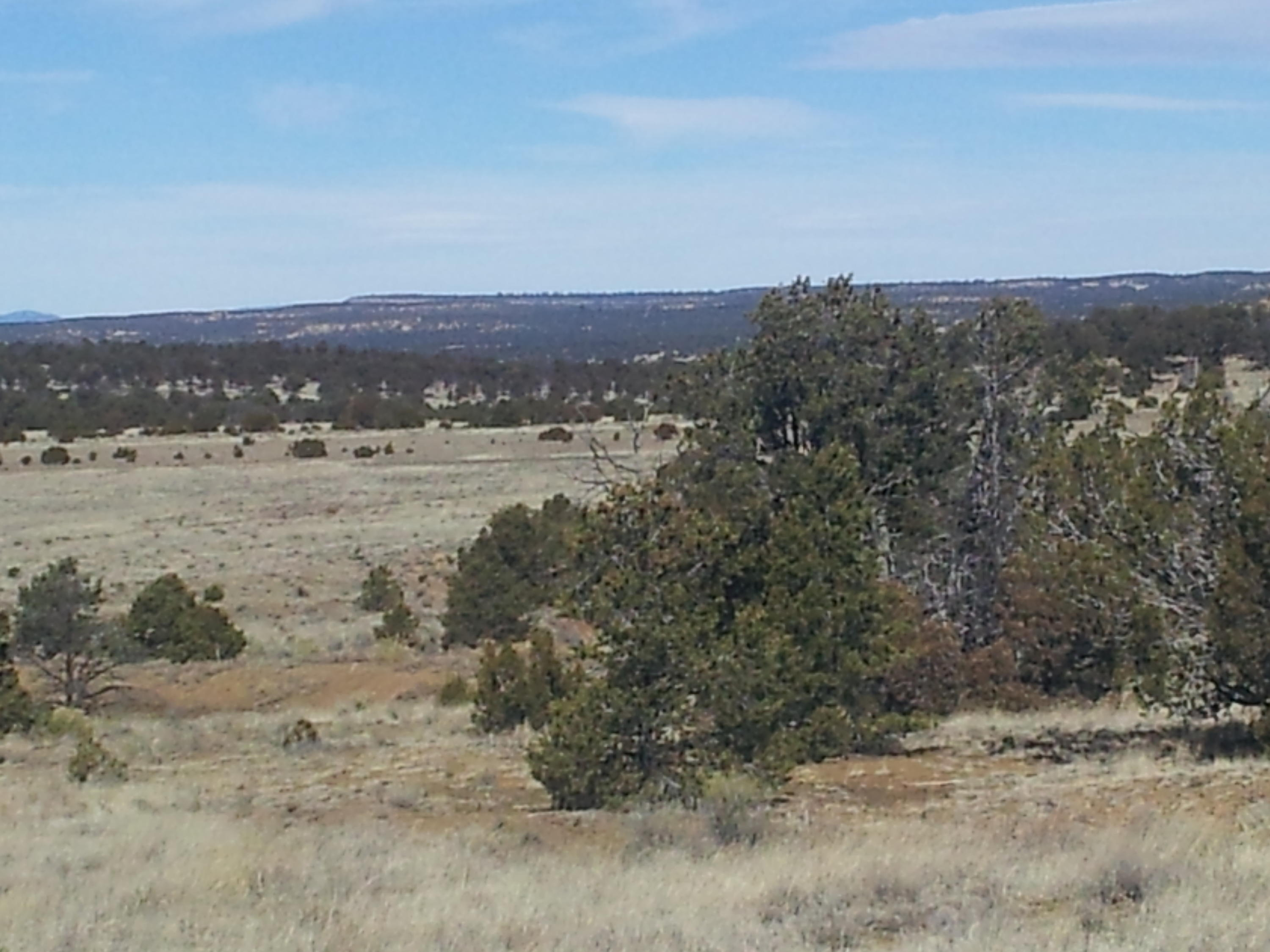 Slurry Road, Pie Town, NM 87827 - Pie Town, NM real estate listing