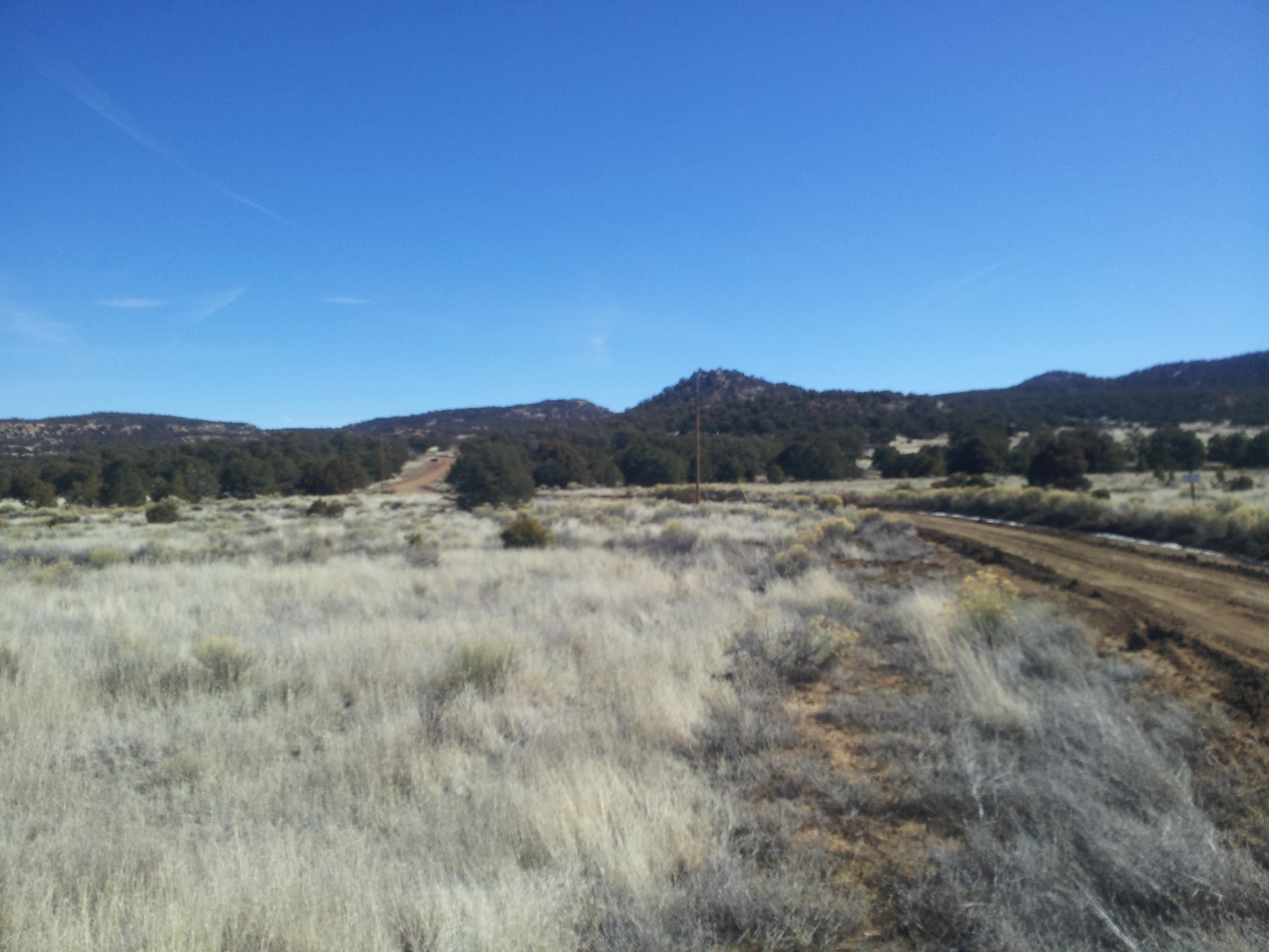 Webb Ranch Road, Pie Town, NM 87827 - Pie Town, NM real estate listing